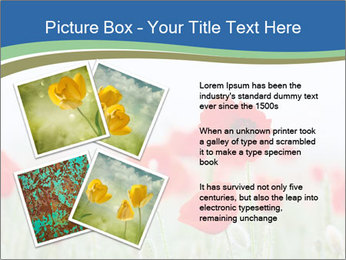 0000079595 PowerPoint Template - Slide 23