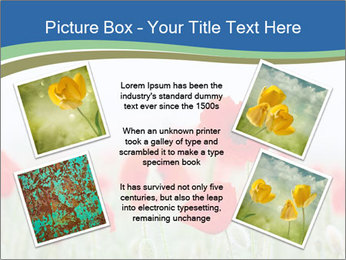 0000079595 PowerPoint Template - Slide 24