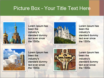 0000079603 PowerPoint Template - Slide 14