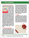 0000079616 Word Templates - Page 3
