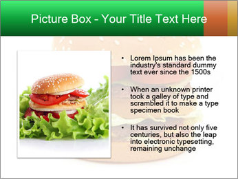 0000079617 PowerPoint Template - Slide 13