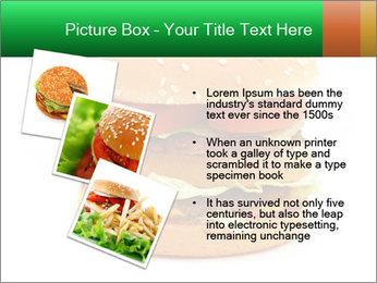 0000079617 PowerPoint Template - Slide 17