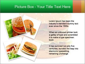0000079617 PowerPoint Template - Slide 23