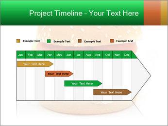 0000079617 PowerPoint Template - Slide 25