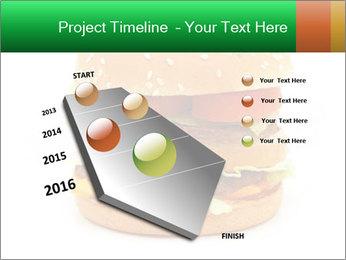 0000079617 PowerPoint Template - Slide 26