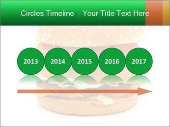 0000079617 PowerPoint Template - Slide 29