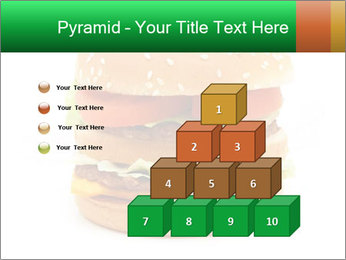0000079617 PowerPoint Template - Slide 31