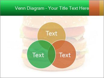 0000079617 PowerPoint Template - Slide 33