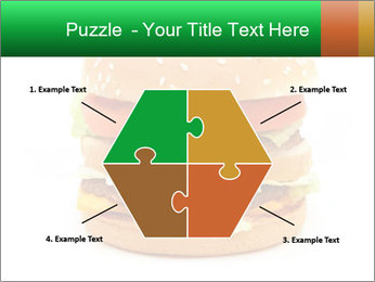 0000079617 PowerPoint Template - Slide 40
