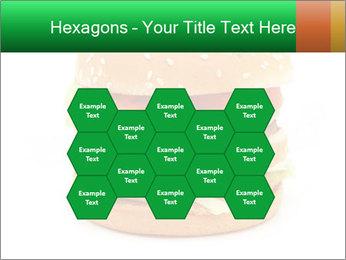 0000079617 PowerPoint Template - Slide 44