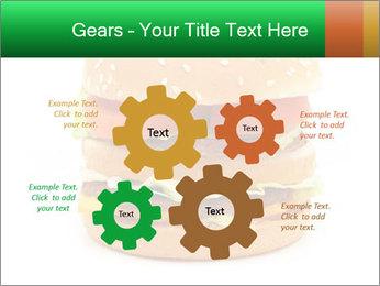 0000079617 PowerPoint Template - Slide 47