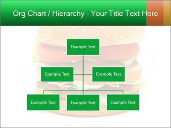 0000079617 PowerPoint Template - Slide 66