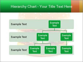 0000079617 PowerPoint Template - Slide 67