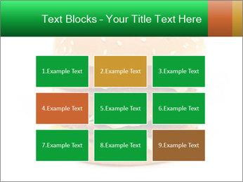 0000079617 PowerPoint Template - Slide 68