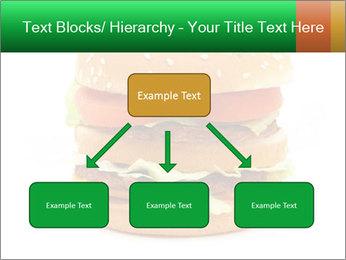0000079617 PowerPoint Template - Slide 69