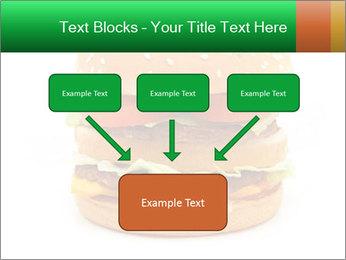 0000079617 PowerPoint Template - Slide 70