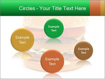 0000079617 PowerPoint Template - Slide 77