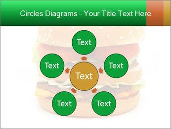 0000079617 PowerPoint Template - Slide 78