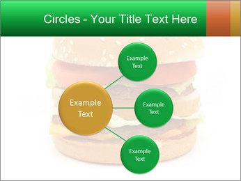 0000079617 PowerPoint Template - Slide 79
