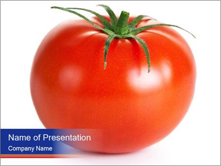 0000079623 PowerPoint Templates