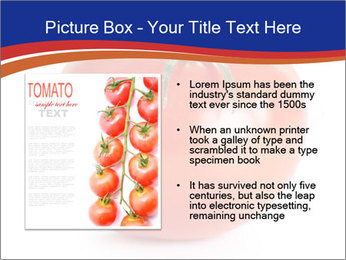 0000079623 PowerPoint Template - Slide 13