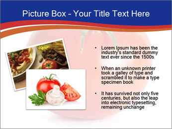 0000079623 PowerPoint Template - Slide 20