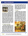 0000079625 Word Templates - Page 3