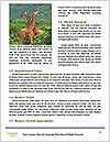 0000079625 Word Templates - Page 4