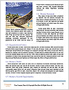 0000079638 Word Templates - Page 4