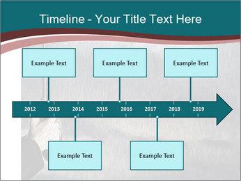 0000079649 PowerPoint Templates - Slide 28