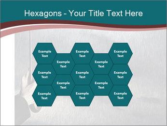 0000079649 PowerPoint Templates - Slide 44