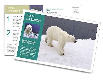 0000079653 Postcard Templates