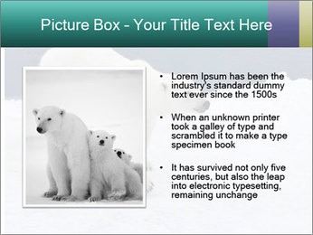 0000079653 PowerPoint Templates - Slide 13