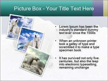 0000079653 PowerPoint Templates - Slide 17
