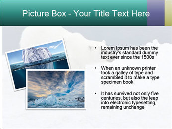 0000079653 PowerPoint Templates - Slide 20