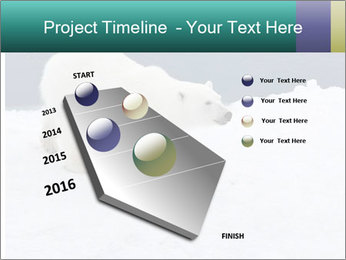 0000079653 PowerPoint Templates - Slide 26