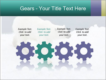 0000079653 PowerPoint Templates - Slide 48