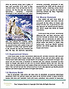 0000079653 Word Templates - Page 4