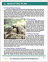 0000079653 Word Templates - Page 8