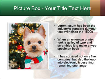 0000079659 PowerPoint Template - Slide 13
