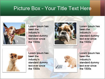 0000079659 PowerPoint Template - Slide 14