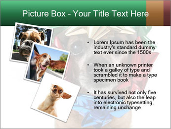 0000079659 PowerPoint Template - Slide 17