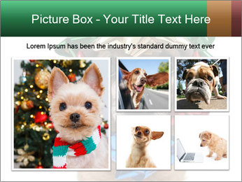 0000079659 PowerPoint Template - Slide 19