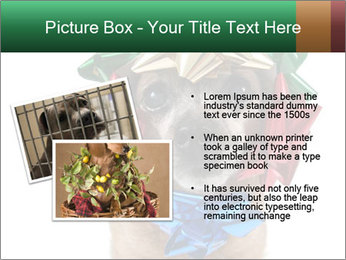 0000079659 PowerPoint Template - Slide 20