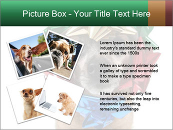 0000079659 PowerPoint Template - Slide 23