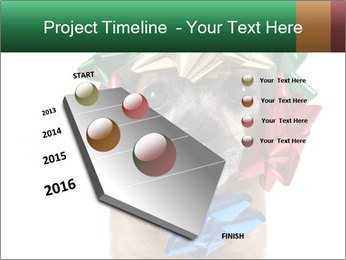 0000079659 PowerPoint Template - Slide 26