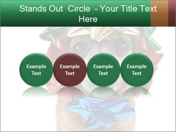 0000079659 PowerPoint Template - Slide 76