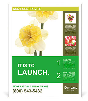 0000079661 Poster Templates