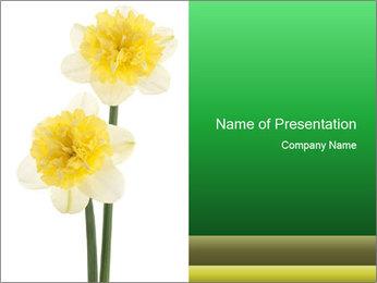 0000079661 PowerPoint Template - Slide 1