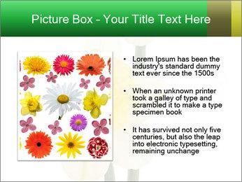 0000079661 PowerPoint Template - Slide 13